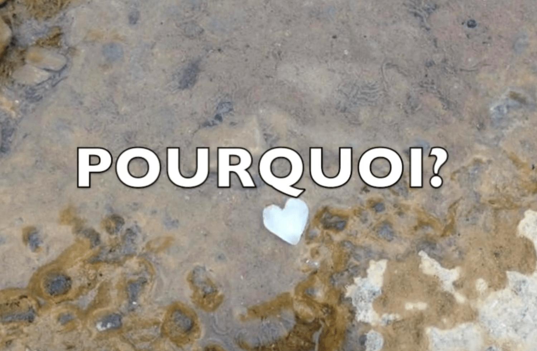 Actualité Poem26-min